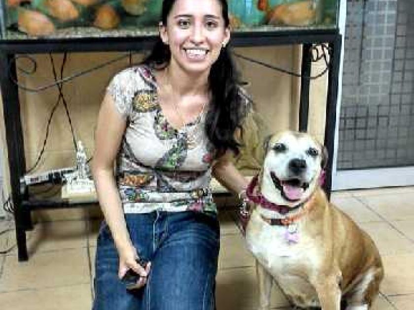 formation aide soignante veterinaire