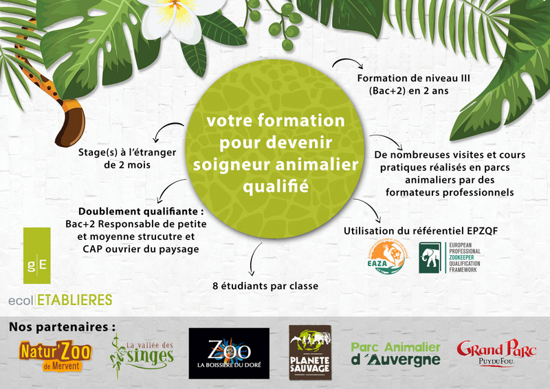 formation aide soignante zoo