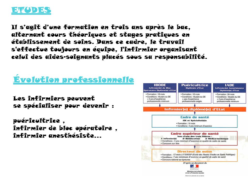 formation infirmiere superieur