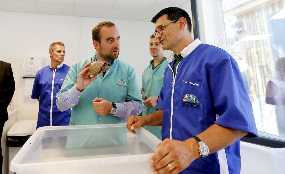 formation secretaire medicale frejus