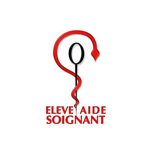 formation aide soignante ifsi